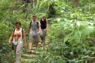 Vườn thực vật - Điểm du lịch sinh thái hấp dẫn