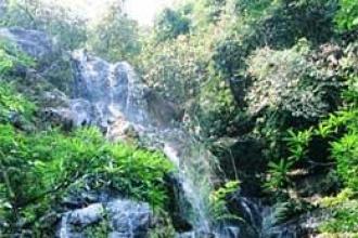 Dịch vụ tại Vườn thực vật Phong Nha - Kẻ Bàng