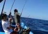 Câu cá biển Bảo Ninh