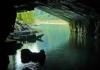 Động Phong Nha – Vườn thực vật – Hang Tám Cô - Động Thiên Đường - Suối Nước Mọc